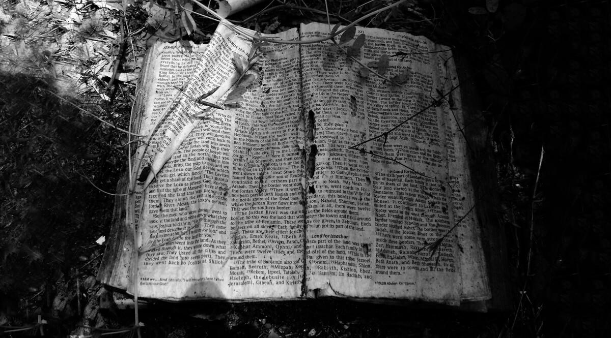 Into the Promised Land, Joshua 18 - Abandoned Bible, White Oak Bayou, Houston, Texas